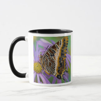 Mug Papillons tropicaux 3 de Sammamish Washington