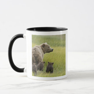 Mug Parc national de Clark des Etats-Unis, Alaska,