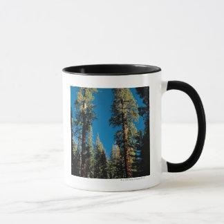 Mug Parc national de séquoia, la Californie