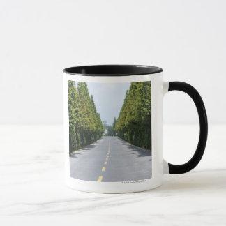 Mug Parc national des Etats-Unis, Yellowstone, route