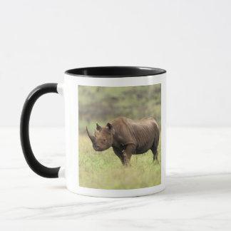 Mug Parc national du Kenya, Nairobi. Rhinocéros noir