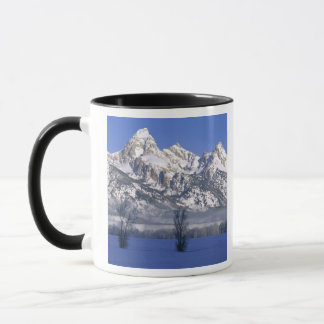 MUG PARC NATIONAL GRAND DE TETON, WYOMING. LES