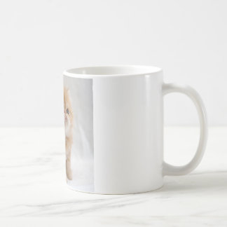 Mug Pas je ! Chaton persan orange courageux