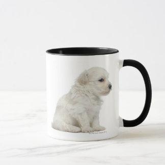 Mug Petit lion de chien ou petit chiot de chien de
