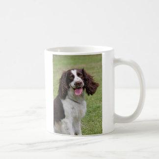 Mug Photo de chien d'épagneul de springer anglais