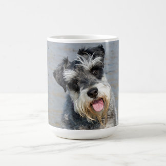 Mug Photo mignonne de chien miniature de Schnauzer à
