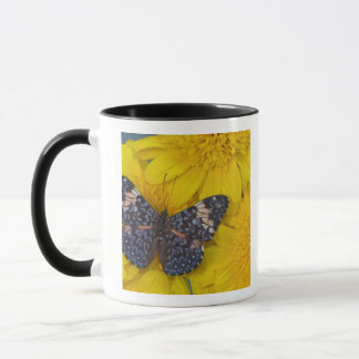 Mug Photographie de Sammamish Washington du papillon