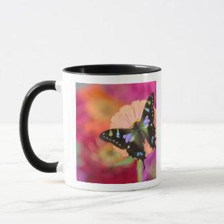 Mug Photographie de Sammamish Washington du papillon