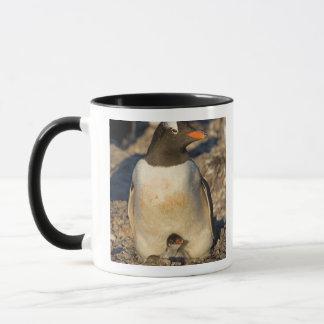 Mug pingouin de gentoo, Pygoscelis Papouasie, avec