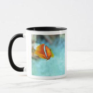 Mug Plan rapproché des poissons d'anémone de tomate,