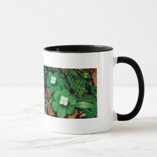 Mug Plancher de forêt/tasse lapin de bébé