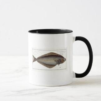 Mug Plat XLVII franc de flétan (Hippoglossus de