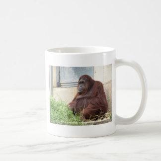 Mug Portrait d'orang-outan