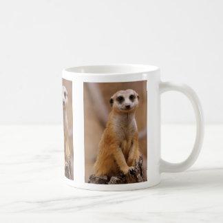 Mug Pose de Meerkat