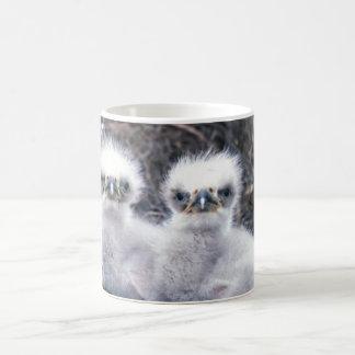 Mug Poussins d'Eagle chauve