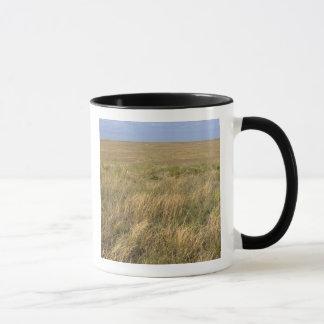 Mug Prairie de prairie à l'est de Sidney, Nébraska