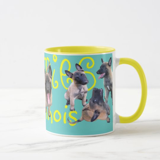Mug puppies malinois