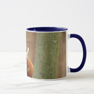 Mug red-panda-026