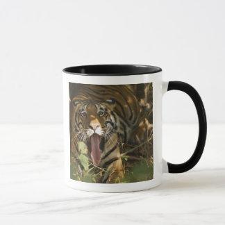 Mug Repos de tigre de Bengale, baîllant