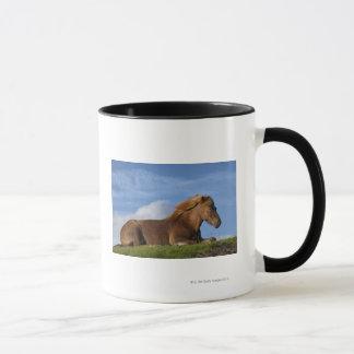 Mug Repos islandais et ciel de cheval