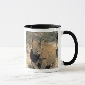Mug Rhinocerous noir, (bicornis de Diceros), du nord