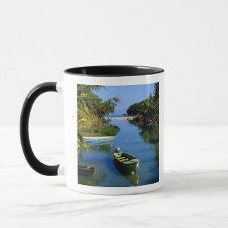 Mug Rivière pittoresque près d'Ocho Rios Jamaïque