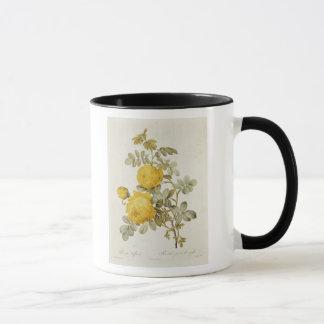 Mug Rosa Sulfurea des 'roses de Les