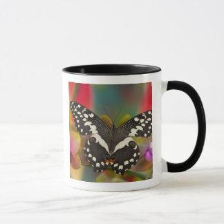 Mug Sammamish, papillon tropical 10 de Washington