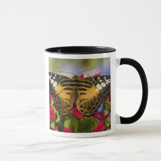 Mug Sammamish, papillon tropical 26 de Washington