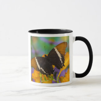 Mug Sammamish, papillon tropical 29 de Washington