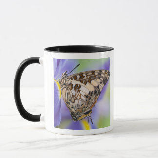 Mug Sammamish, Washington. Papillons tropicaux 22