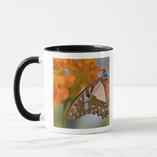 Mug Sammamish, Washington. Papillons tropicaux 47