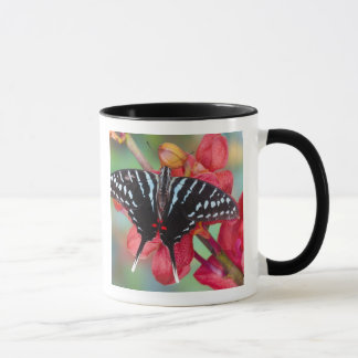 Mug Sammamish, Washington. Papillons tropicaux 48