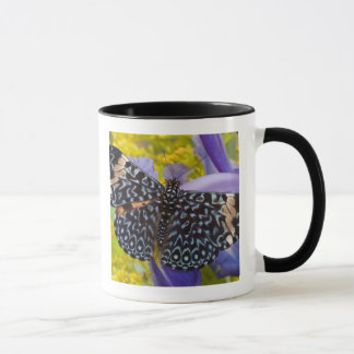 Mug Sammamish, Washington. Papillons tropicaux 55