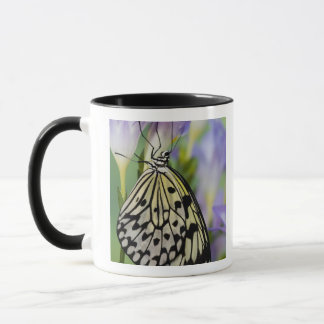 Mug Sammamish, Washington. Papillons tropicaux 6