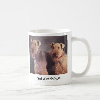 Mug Sel et Ritz, obtenus des Airedales ?