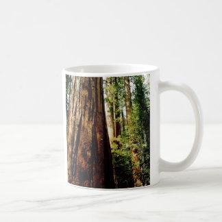 Mug Séquoias de Yosemite