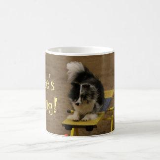 Mug Sheltie accrochant sur une bascule d'agilité