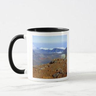 Mug Silversword sur la jante de cratère de Haleakala