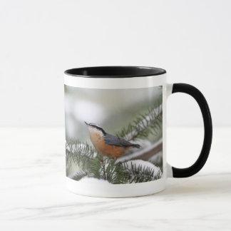 Mug Sittelle sur la branche de Milou en hiver