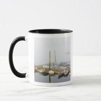 Mug Skiff et brouillard de matin dans le port de