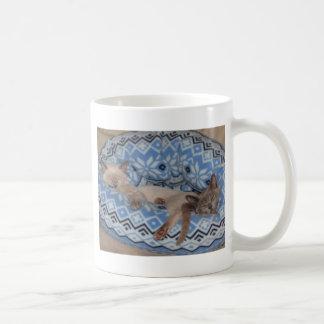 Mug Sommeil de deux chatons de Tonkinese
