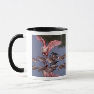 Mug Spatule rose avec Willets en eau peu profonde