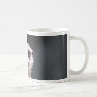 Mug Surveillance de Meerkat