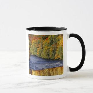 Mug Tahquamenon supérieur tombe au Michigan HAUT