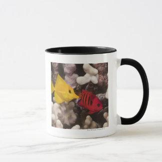 Mug Tang jaune
