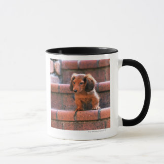 Mug Teckel miniature