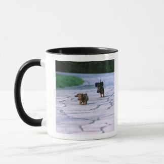 Mug Teckel miniature 3
