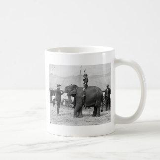 Mug Teddy Roosevelt au cirque : 1924