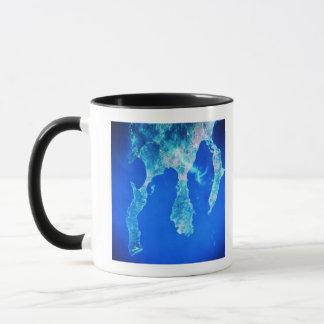 Mug Terre et mer de l'espace